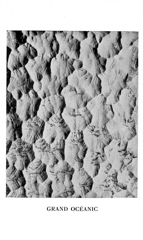 Vitrage Opalescent modele oceanic 1933