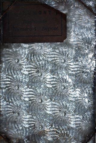 Glace imprimee art nouveau